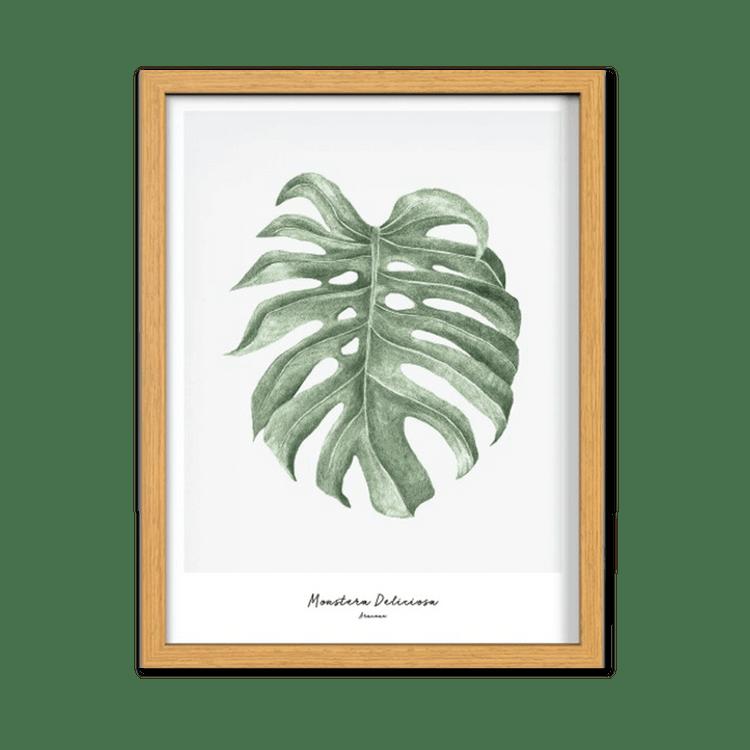 Ethno Tropical 4murs