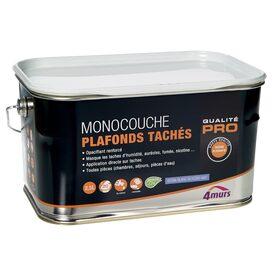 Attrayant Peinture MONOCOUCHE PLAFONDS TACHES Glycéro Blanc Mat 2,5 L Photo