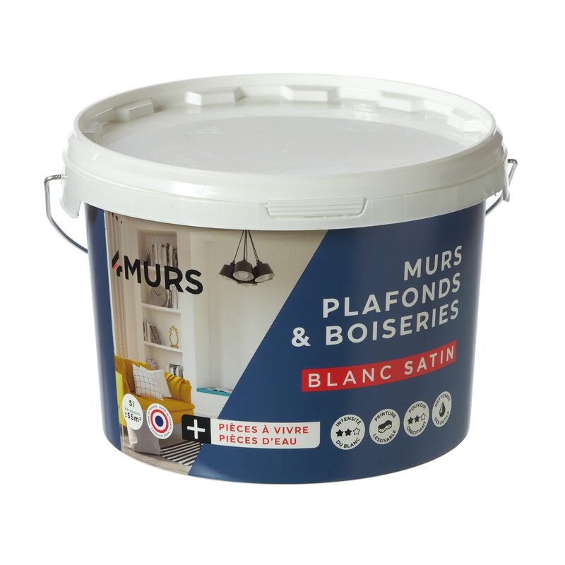 Paint MURS ET PLAFONDS Acrylic Satin 5 L