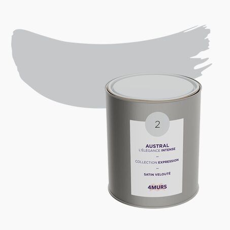 Peinture Multi-supports EXPRESSION Acrylique austral Satiné 2,5 L
