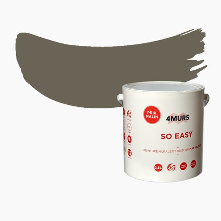 Multi-surface Paint SO EASY Acrylic Matte 2,5 L