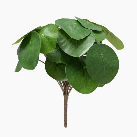 Plante artificielle PILEA